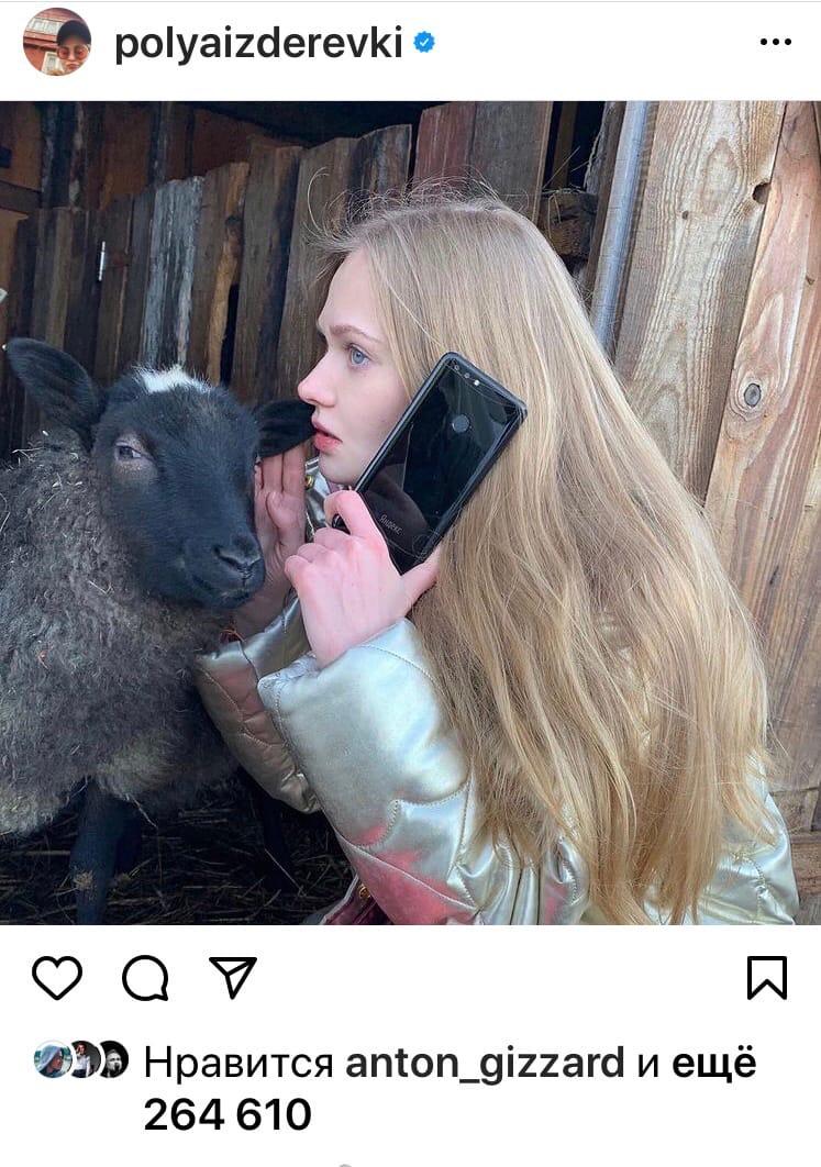 полина блогер