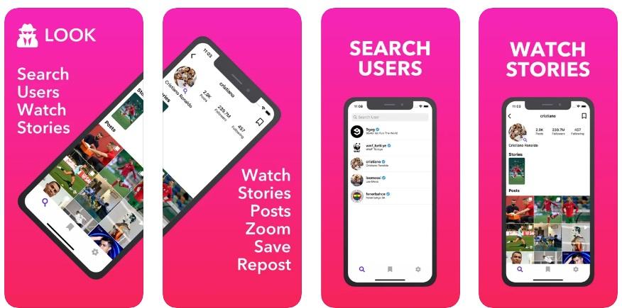 LOOK Insta Post Story Stalker